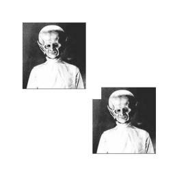 duas cabeça de morosini pra instalar no kit de cacepa (tipo cacepinha)