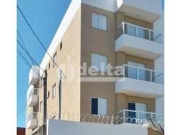 Apartamento para alugar com 2 dormitórios em Santa monica, Uberlandia cod:639784