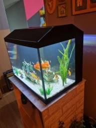 Vendo aquário 50 litros