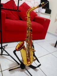 Saxofone alto shelter
