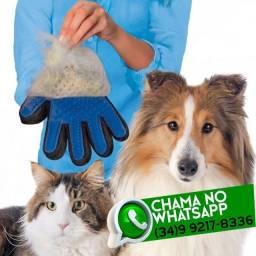Luva Tira Pelos Gato e Cachorro