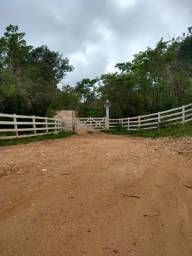 Fazendinhas de 20.000m² em Taquaraçu de Minas