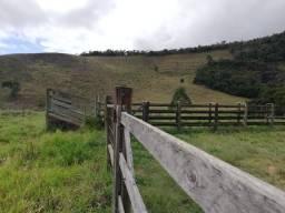 Fazenda 92 hectares em Itaipé MG