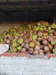 Coco seco 1.50