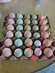 Ovos galados bege, azul e esverdeado