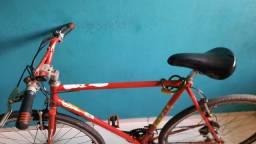 Bicicleta Monarca