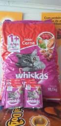 Ração whiskas 10kg +8 sachês de molho