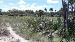 Vendo terras na Bahia 30 minutos de Correntina