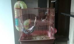 Gaiola para hamster com tudo(preço a combinar)