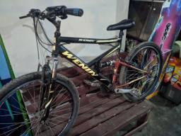 Bicicleta WENDY Revisada
