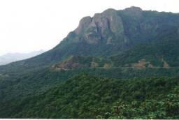 Fazenda de Reserva de Mata Atlântica - Paraná