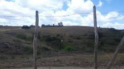 Ven Fazenda com 62 Hectares aceita permuta em Vitoria de Santo Antão