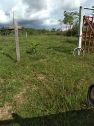Terreno na Estrada do Mutum Km 03 no Asfalto