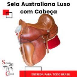 Sela Australiana com Cabeça Luxo