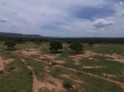 Fazenda 255 hectares Buritis há 130km de Formosa-GO