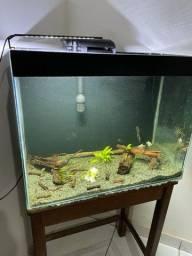 Vendo aquário de 123 litros