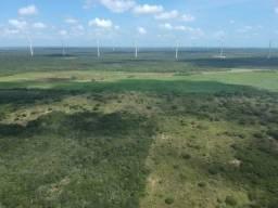 Terreno plano de 15 hectares à 4 km do centro