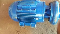Bomba de irrigação wege revisada e com disco novo *