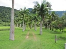 Fazenda 216 hectares, 70 % formada oportunidade de negócios rurais !