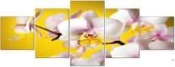 Quadros Mosaico Flores Orquídeas 5Pçs Mdf Paisagem Natureza Plantas Facil instalação