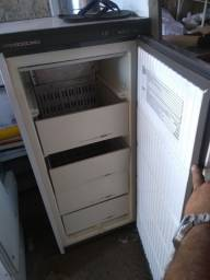 Freezer vertical 5 gvt