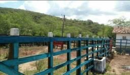 Área/Fazenda em Gravatá-PE