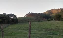 Alugo terreno 3.000m2 - Maricá - RJ