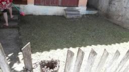 Corta-se grama *