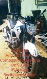 Fazer 250 2013/14 - 2013