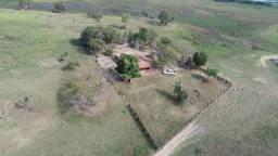 Fazenda formada em Poconé /MT com 1360 hectares