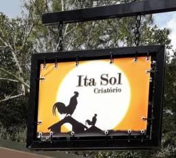 Ita-sol Criatório