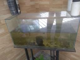 5 aquários