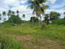 Fazenda com 150 hectares na região de São Gonçalo do Amarante