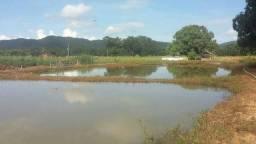 Fazenda 520 hectares, lavoura, pecuária e piscicultura