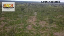 Fazenda com 7.986 Hectares à venda em Vista Alegre/RO