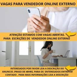 Vagas para vendedor online externo