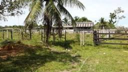 Vende-se uma Fazendinha com 246 hectare