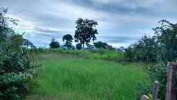 Fazenda 320 ha Vende Parte