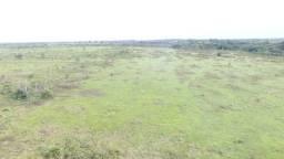 130 hectares proximo de Castanhal por 700 mil reais