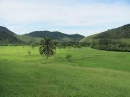 Léo Imóveis exclusividade Fazenda 216 hectares, 70 % plana