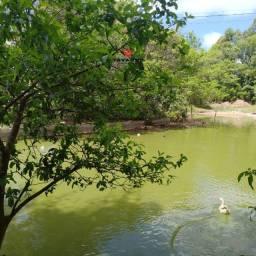 O mais perfeito sítio com 29.000 m², duas lagoas - Esmeraldas