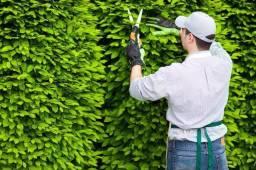 Trabalho de jardineiro