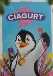 Venha ser um Vendedor CIAGURT. Sorvetes de iogurte.
