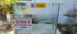 CAIXA EXPOSITOR PORTÁTIL EM VIDRO