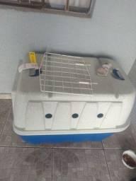 Caixa de cachorro N5