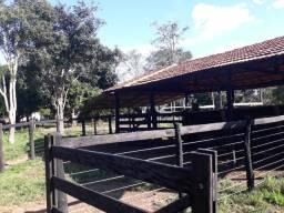 Sitio na Br 364 a 30 km Várzea Grande