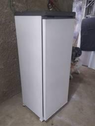 Freezer Vertical Prosdocimo 110V