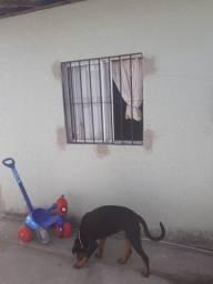 Casa no bairro Pedras, Residencial Denison Amorim 3 quartos.