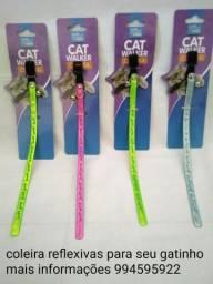 Coleira gatos pets acessórios novo
