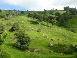 Vendo fazenda top 53 hectares